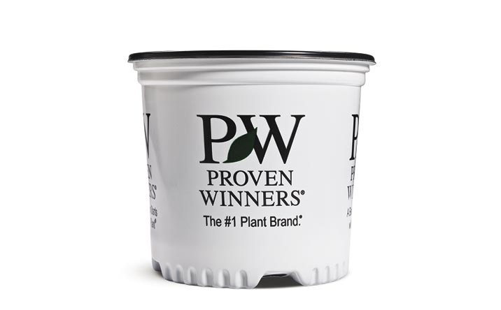 1 Gallon Premium Proven Winners® Sold Individual