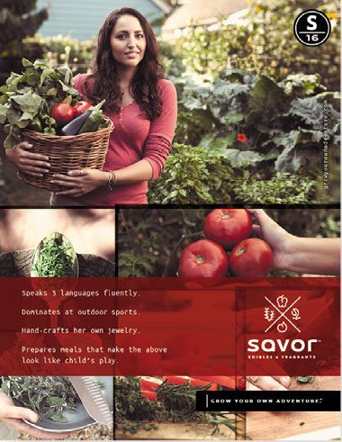 Savor™ Mini Catalog