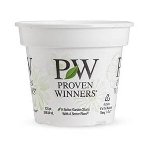 Pleasant View Gardens Proven Winners Container